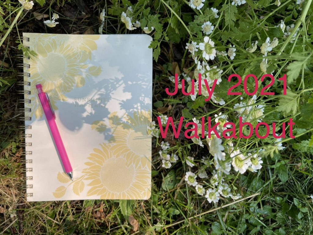July 2021 Walkabout