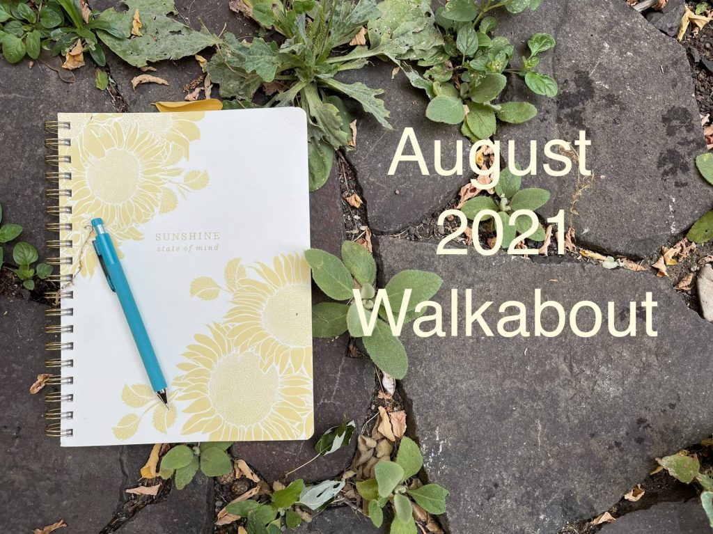 August 2021 Walkabout