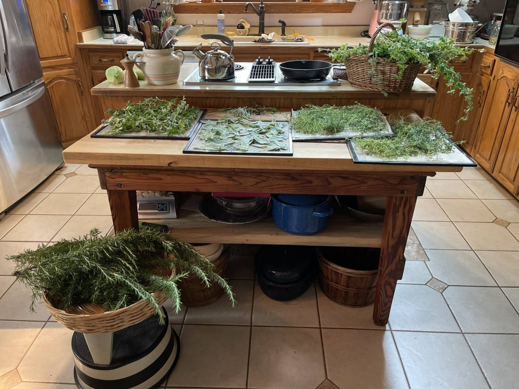 processing culinary herbs